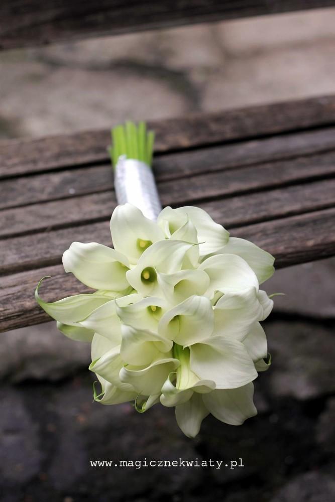 biały, kremowy, bukiet slubny, kraków, magiczne kwiaty